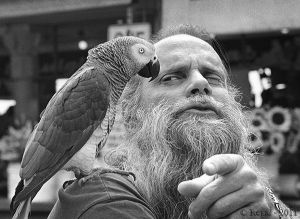 Man with Parrot, Market 4x.jpg