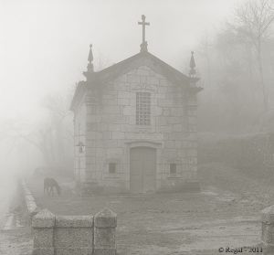 Horse and church in fog - Portugal.jpg